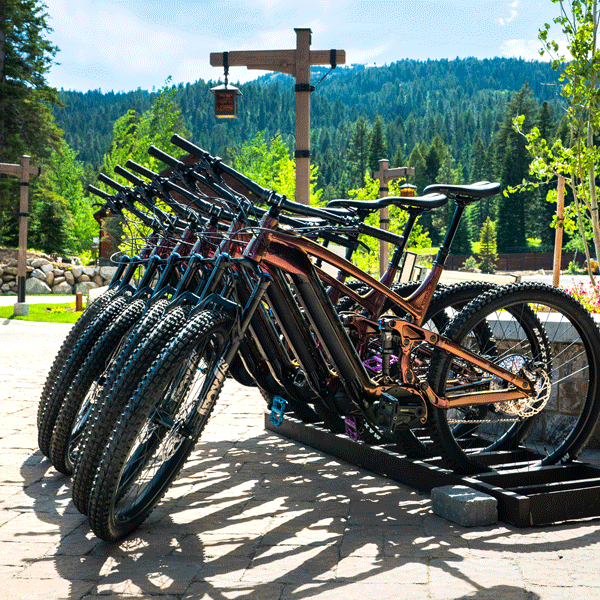 Bike-Rental-(600x600).png