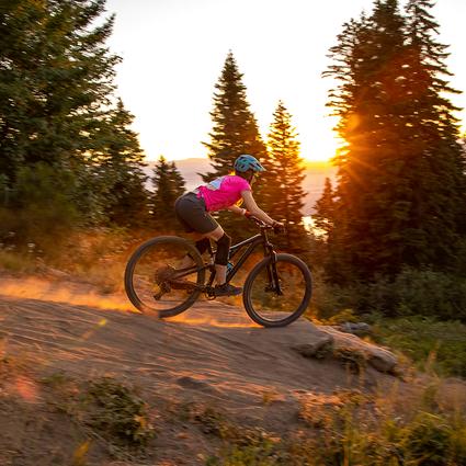 Downhill-Bike-Homepage-Web.png