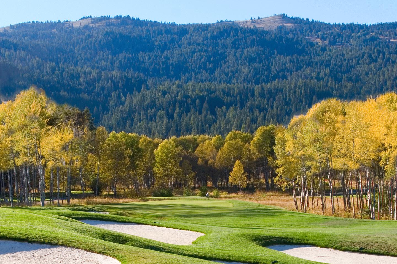 Final-Golf-(6).png