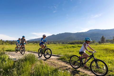 Meadow-Biking.png