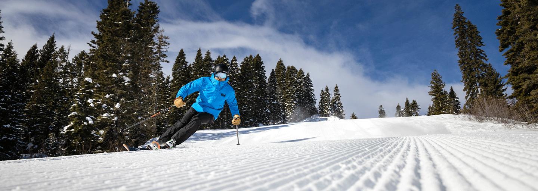 Skiing-Tamrack.png