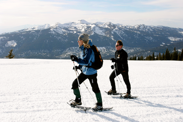 Snowshoeing-Activity.png