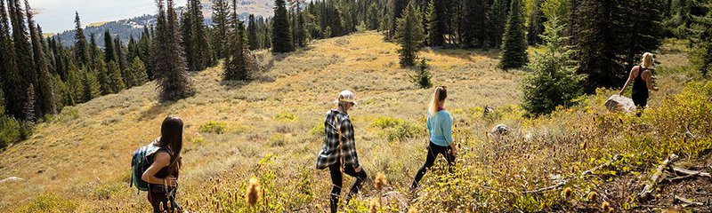 Hikers on trails in Idaho